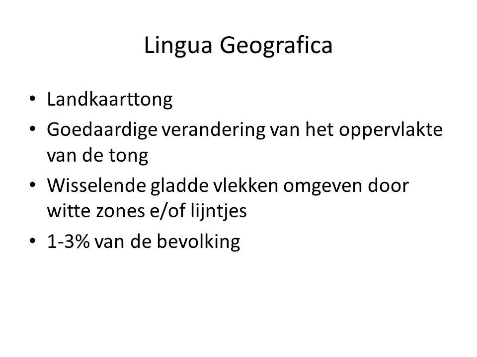 Lingua Geografica Landkaarttong