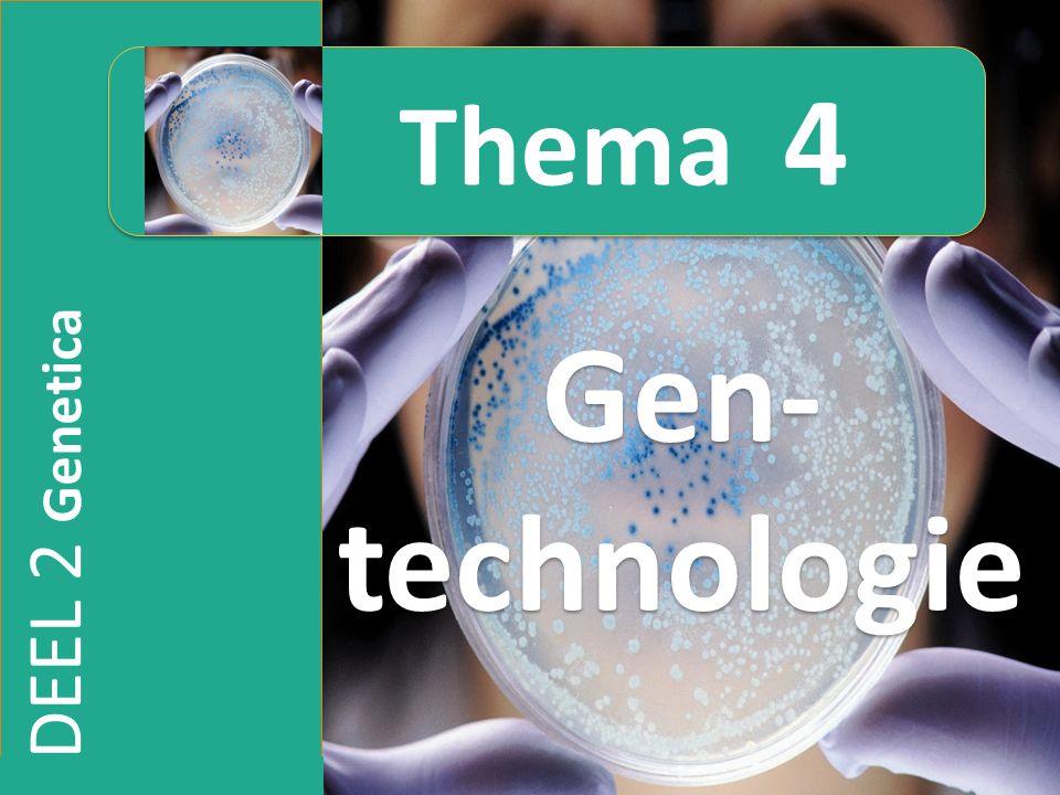 Thema 4 Gen-technologie DEEL 2 Genetica