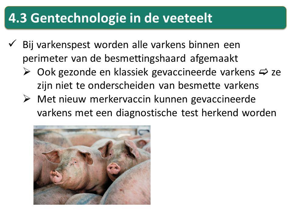 4.3 Gentechnologie in de veeteelt