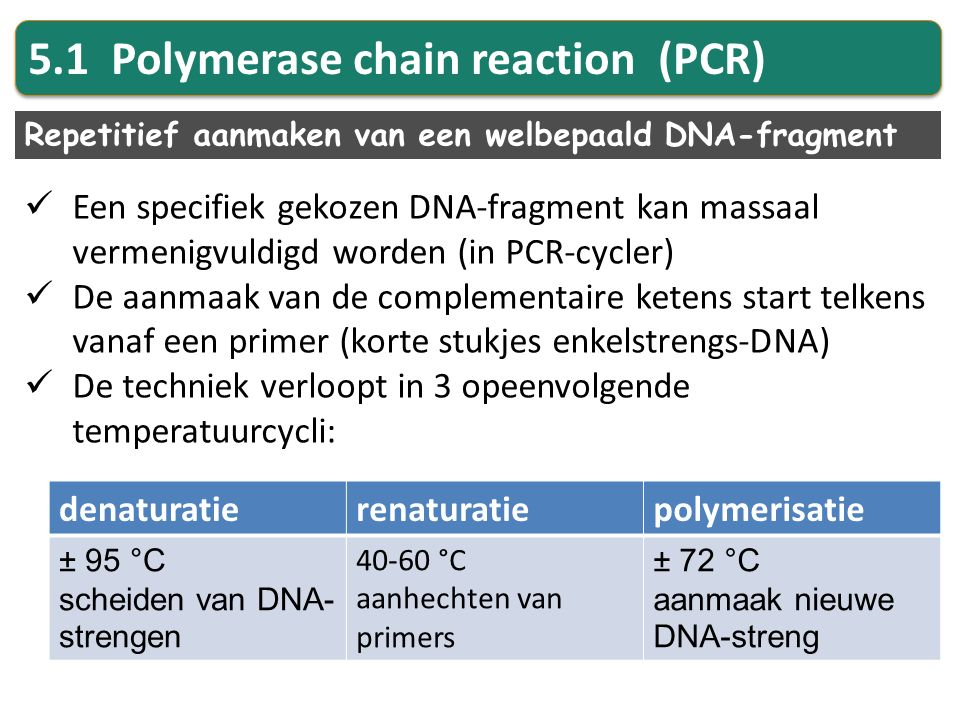5.1 Polymerase chain reaction (PCR)