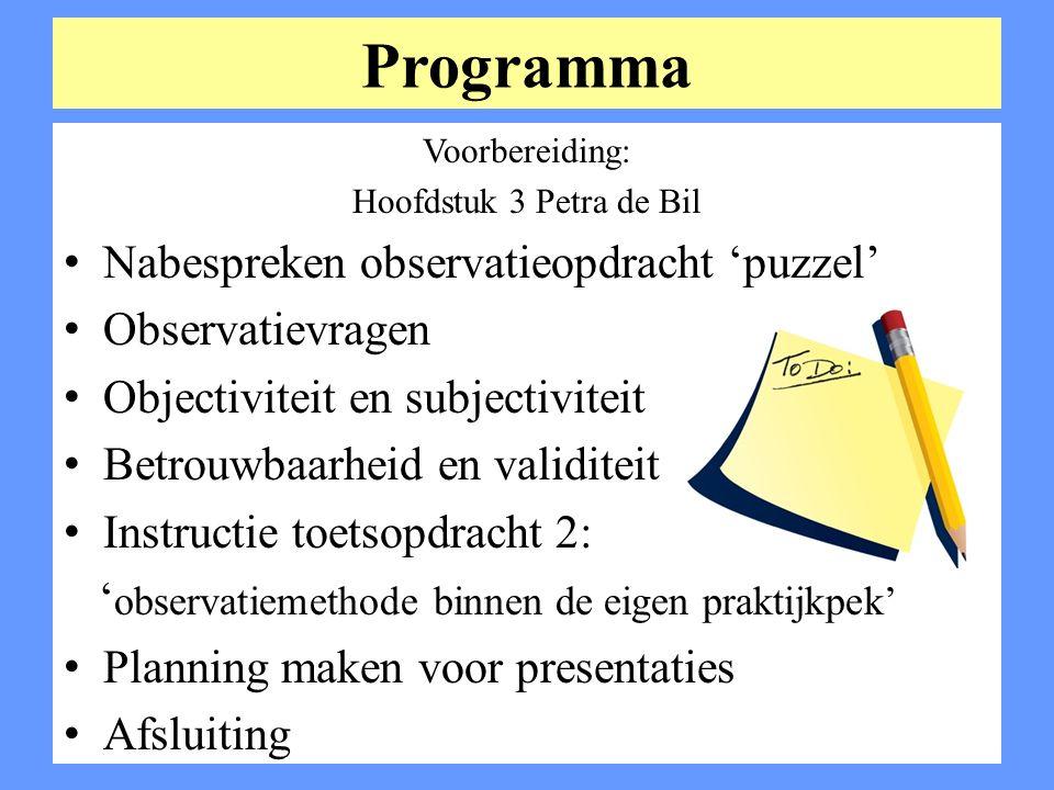 Programma Nabespreken observatieopdracht 'puzzel' Observatievragen