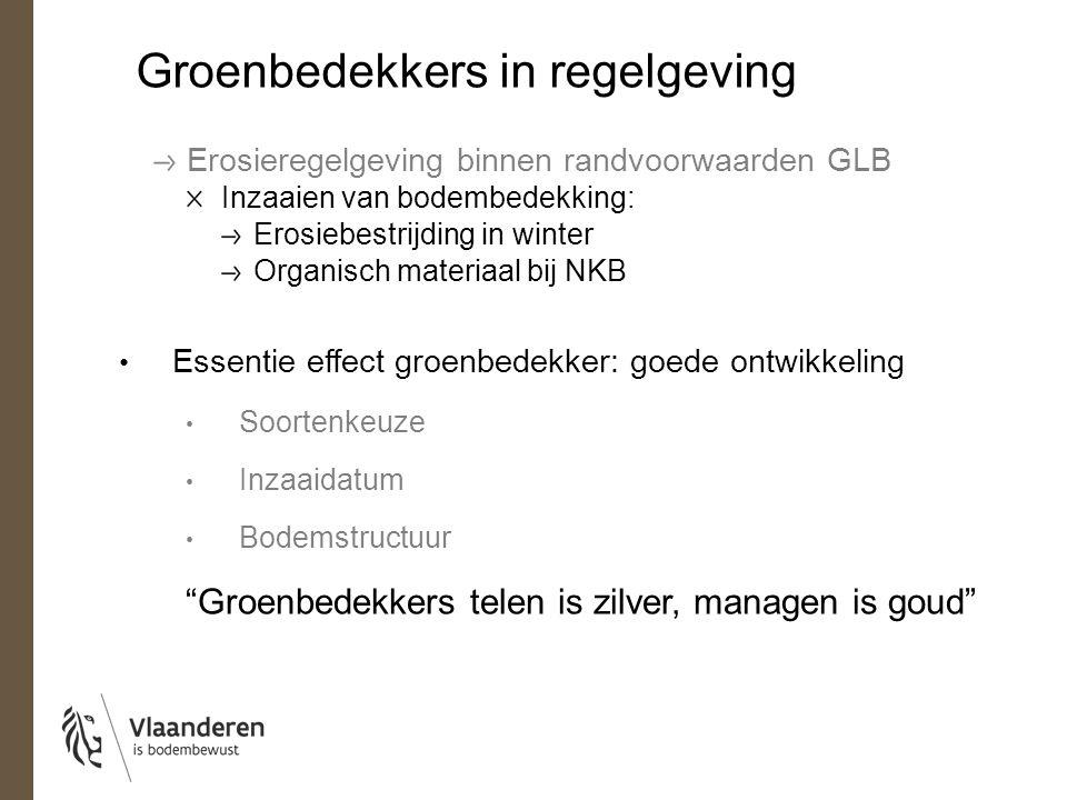 Groenbedekkers in regelgeving