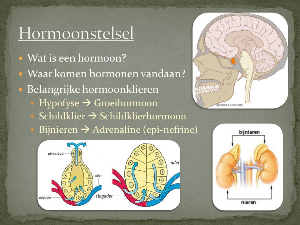 Hormoonstelsel Wat is een hormoon Waar komen hormonen vandaan