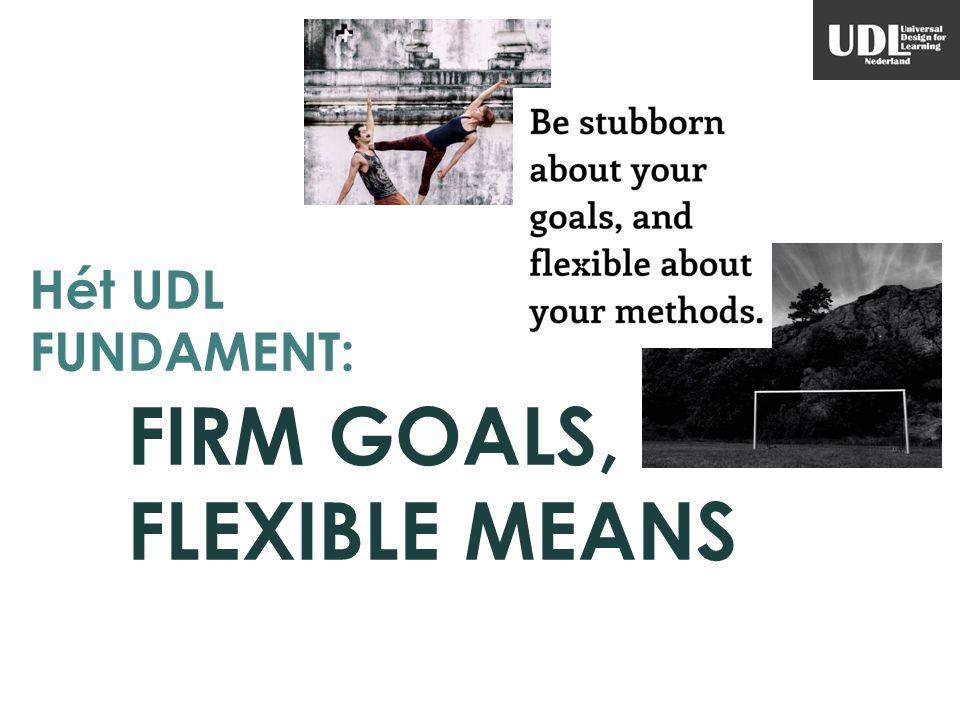 FIRM GOALS, FLEXIBLE MEANS
