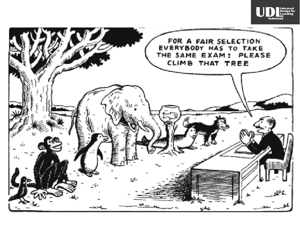 Plaatje professor + dieren met opm professo: for a fair selection everybody has to take the same exam: Please climb that three.