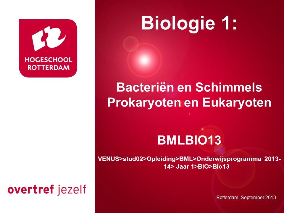 Bacteriën en Schimmels Prokaryoten en Eukaryoten
