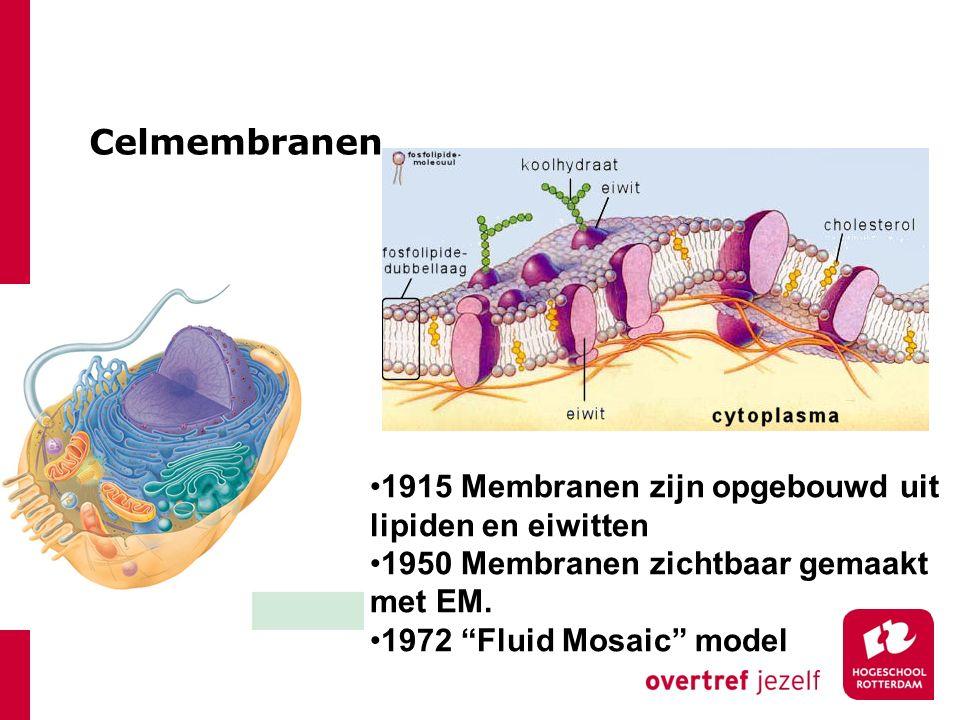 Celmembranen 1915 Membranen zijn opgebouwd uit lipiden en eiwitten