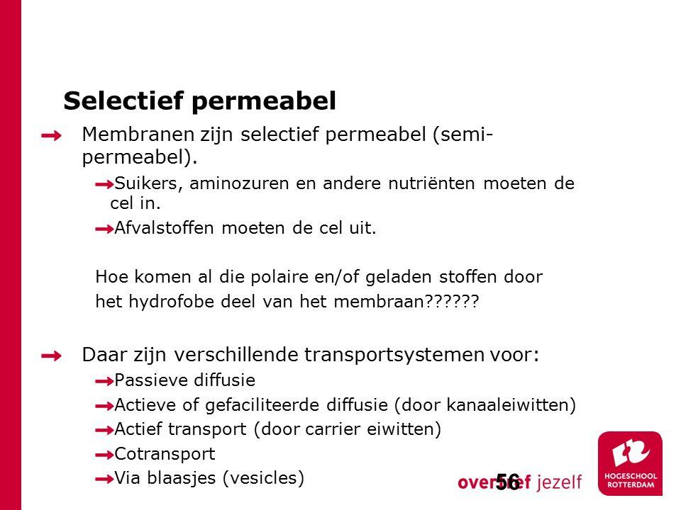 Selectief permeabel Membranen zijn selectief permeabel (semi-permeabel). Suikers, aminozuren en andere nutriënten moeten de cel in.