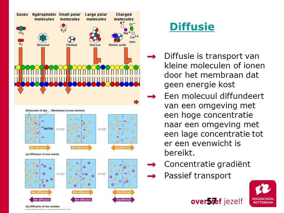 Diffusie Diffusie is transport van kleine moleculen of ionen door het membraan dat geen energie kost.