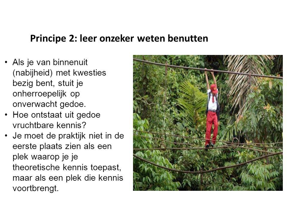 Principe 2: leer onzeker weten benutten