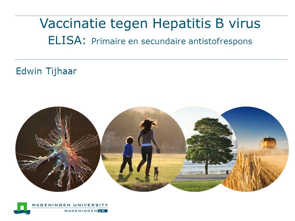 Vaccinatie tegen Hepatitis B virus ELISA: Primaire en secundaire antistofrespons