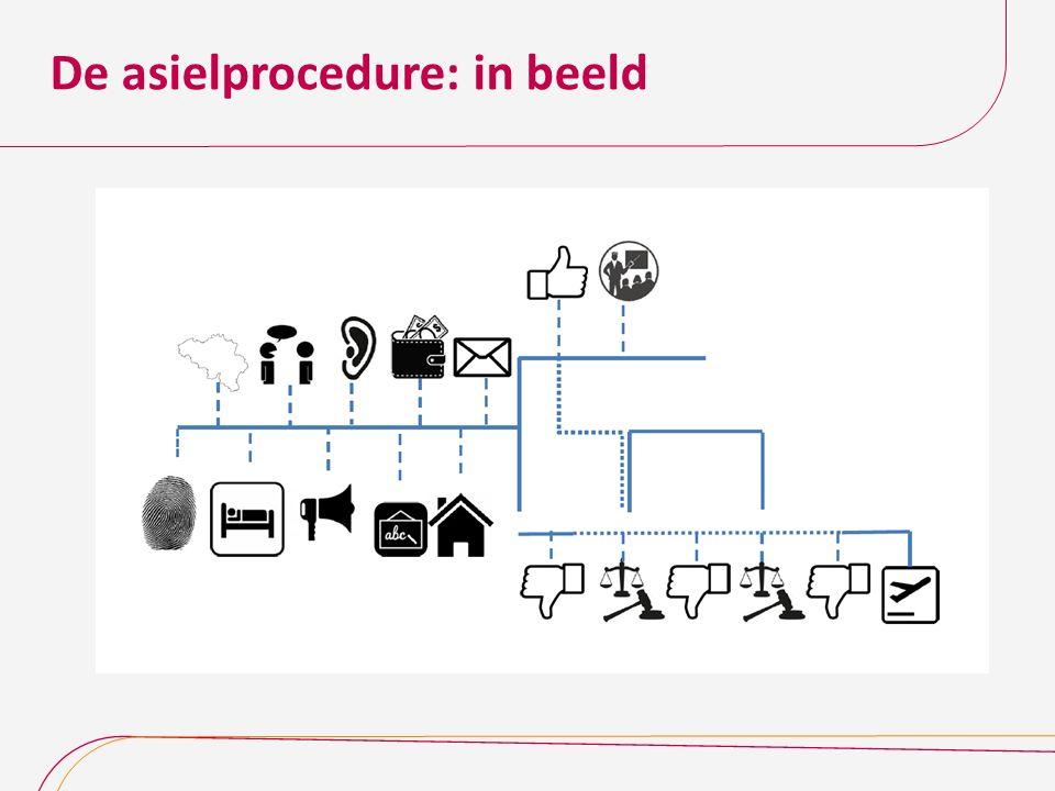 De asielprocedure: in beeld
