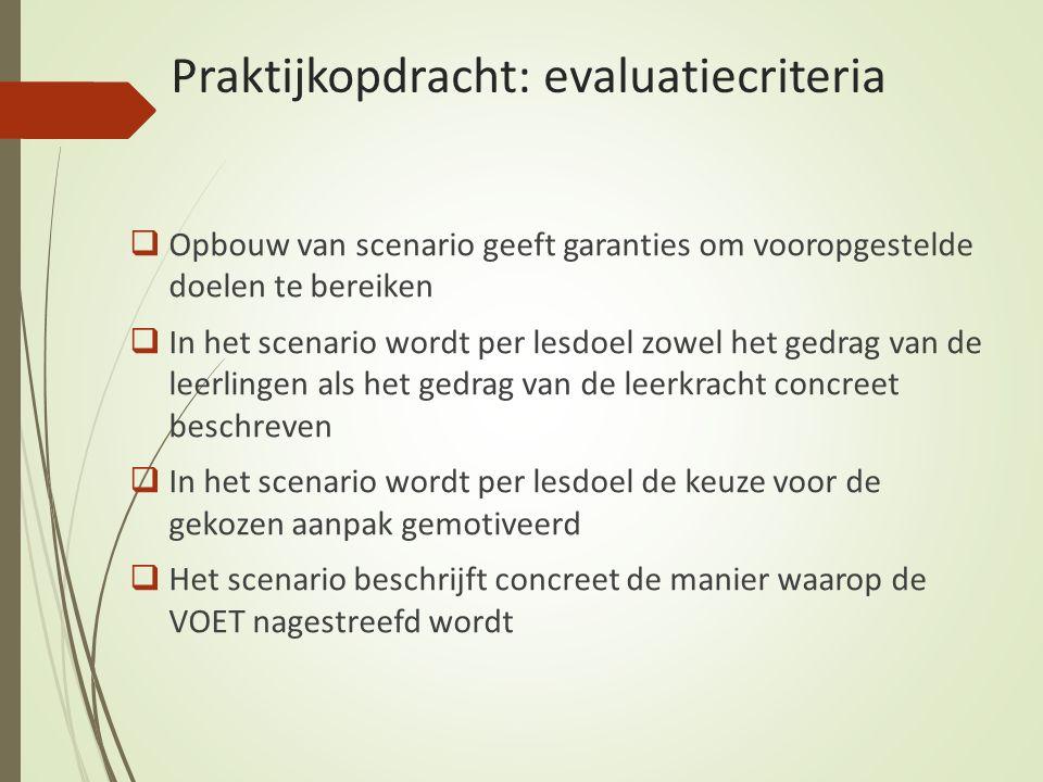 Praktijkopdracht: evaluatiecriteria