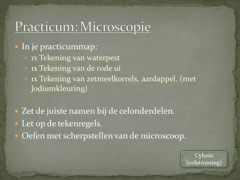 Practicum: Microscopie