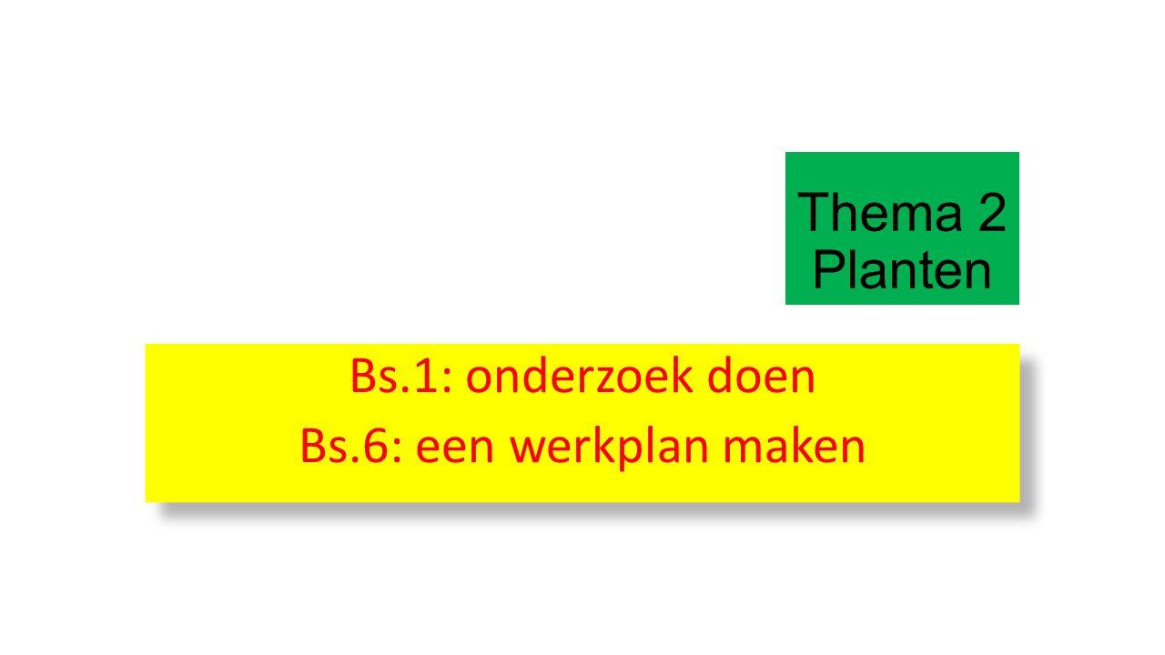 Bs.1: onderzoek doen Bs.6: een werkplan maken