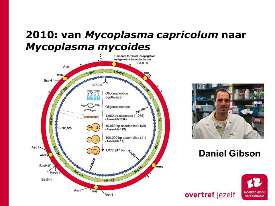 2010: van Mycoplasma capricolum naar Mycoplasma mycoides