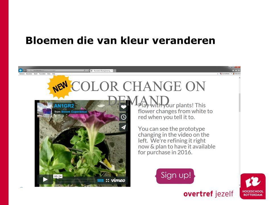 Bloemen die van kleur veranderen