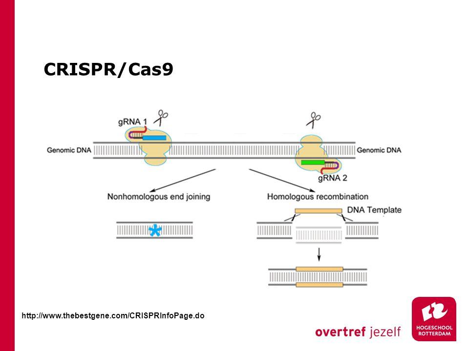 CRISPR/Cas9 http://www.thebestgene.com/CRISPRInfoPage.do