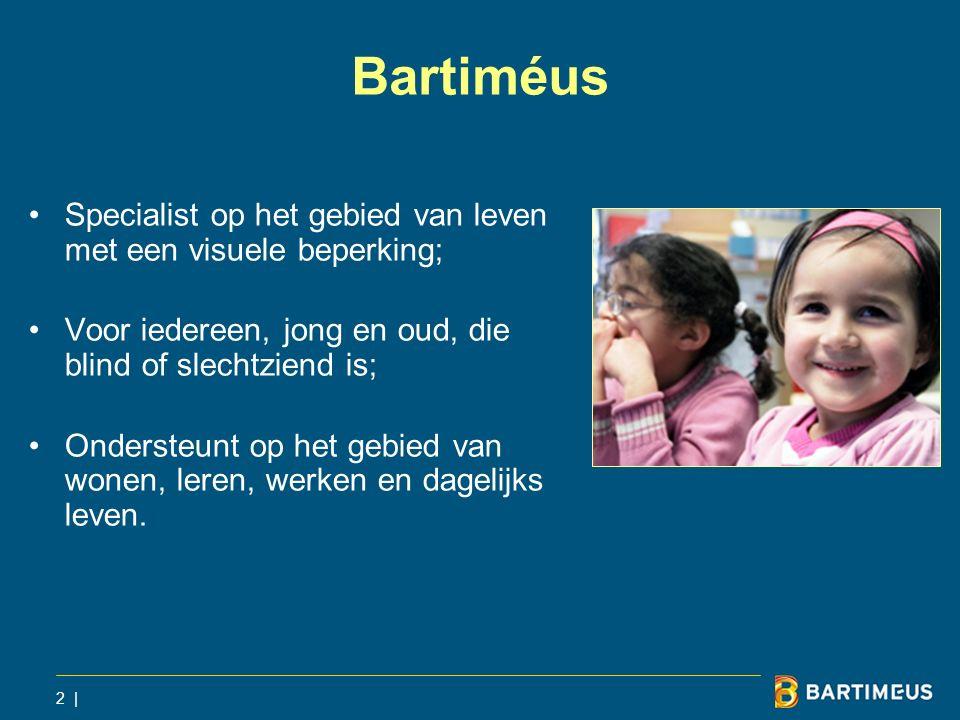 Bartiméus Specialist op het gebied van leven met een visuele beperking; Voor iedereen, jong en oud, die blind of slechtziend is;