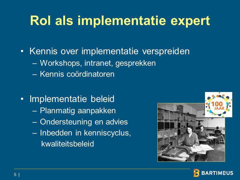 Rol als implementatie expert