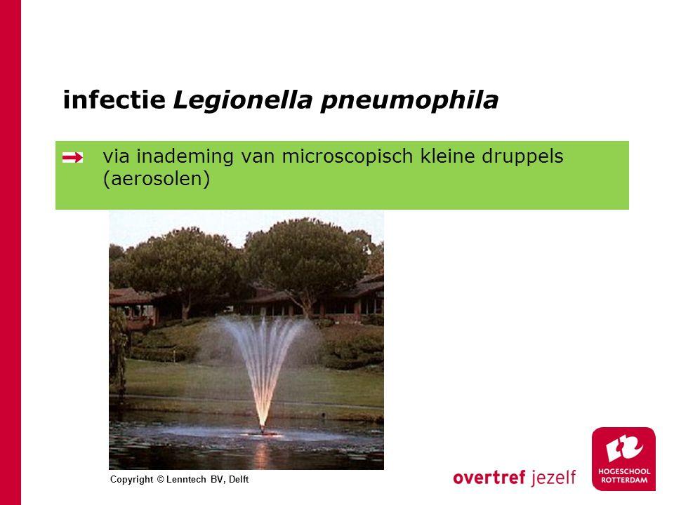 infectie Legionella pneumophila