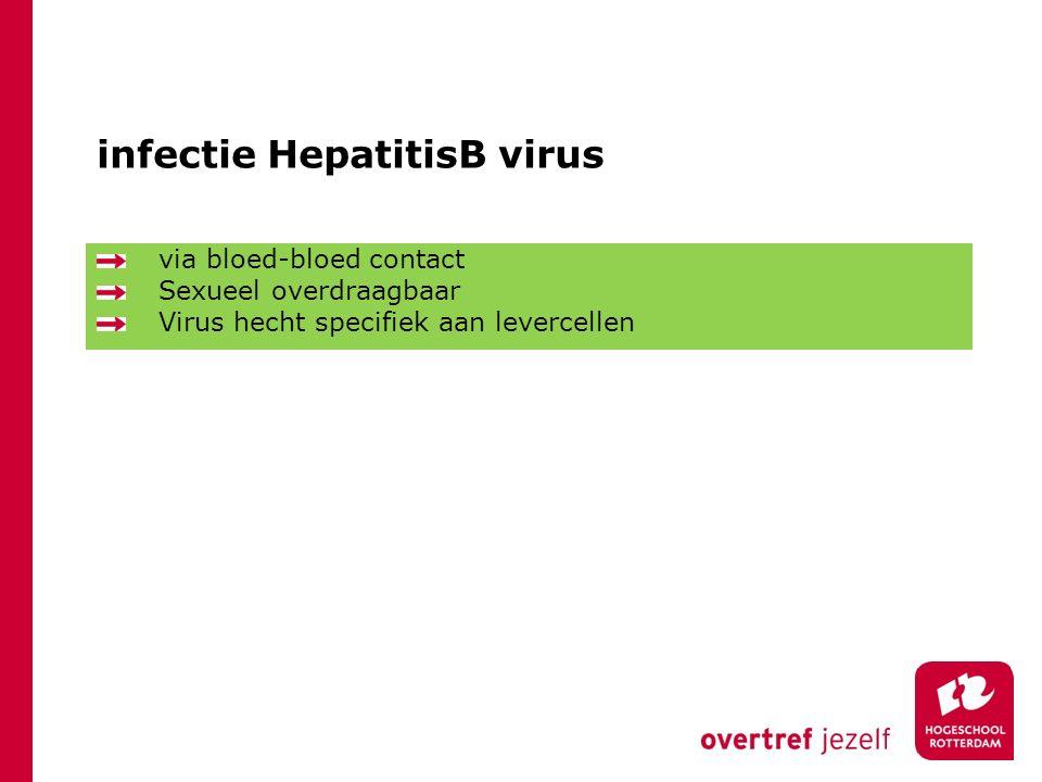 infectie HepatitisB virus