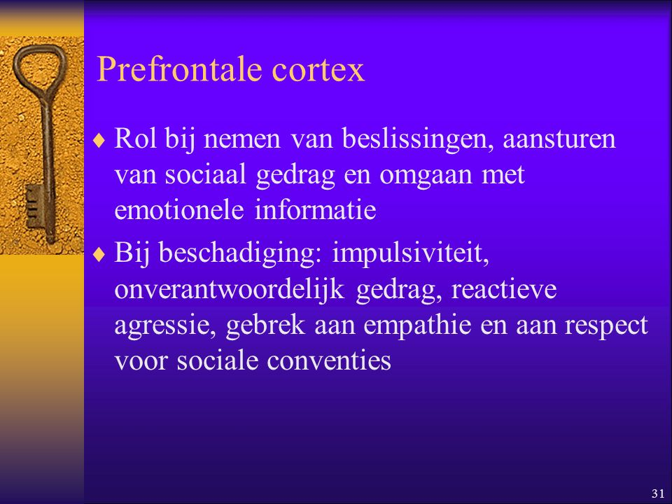 Prefrontale cortex Rol bij nemen van beslissingen, aansturen van sociaal gedrag en omgaan met emotionele informatie.