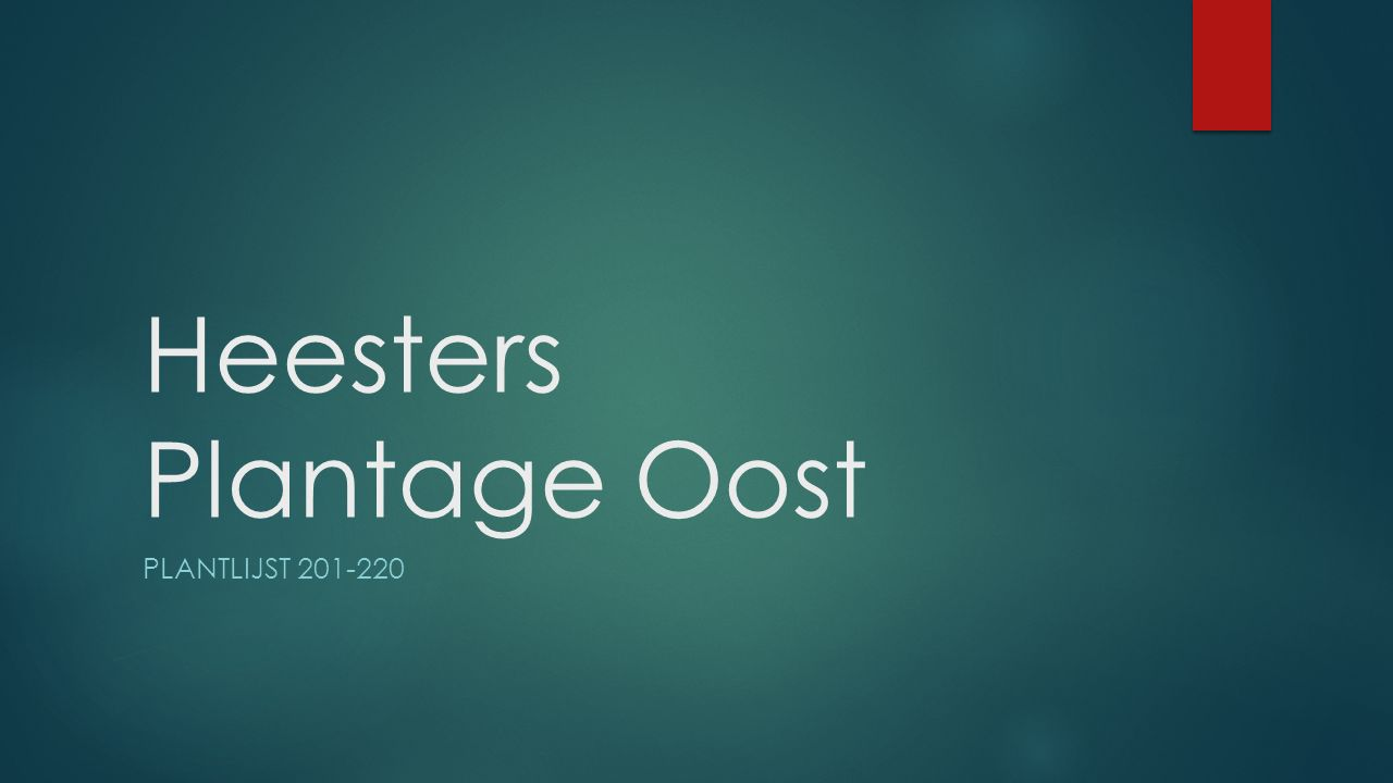 Heesters Plantage Oost