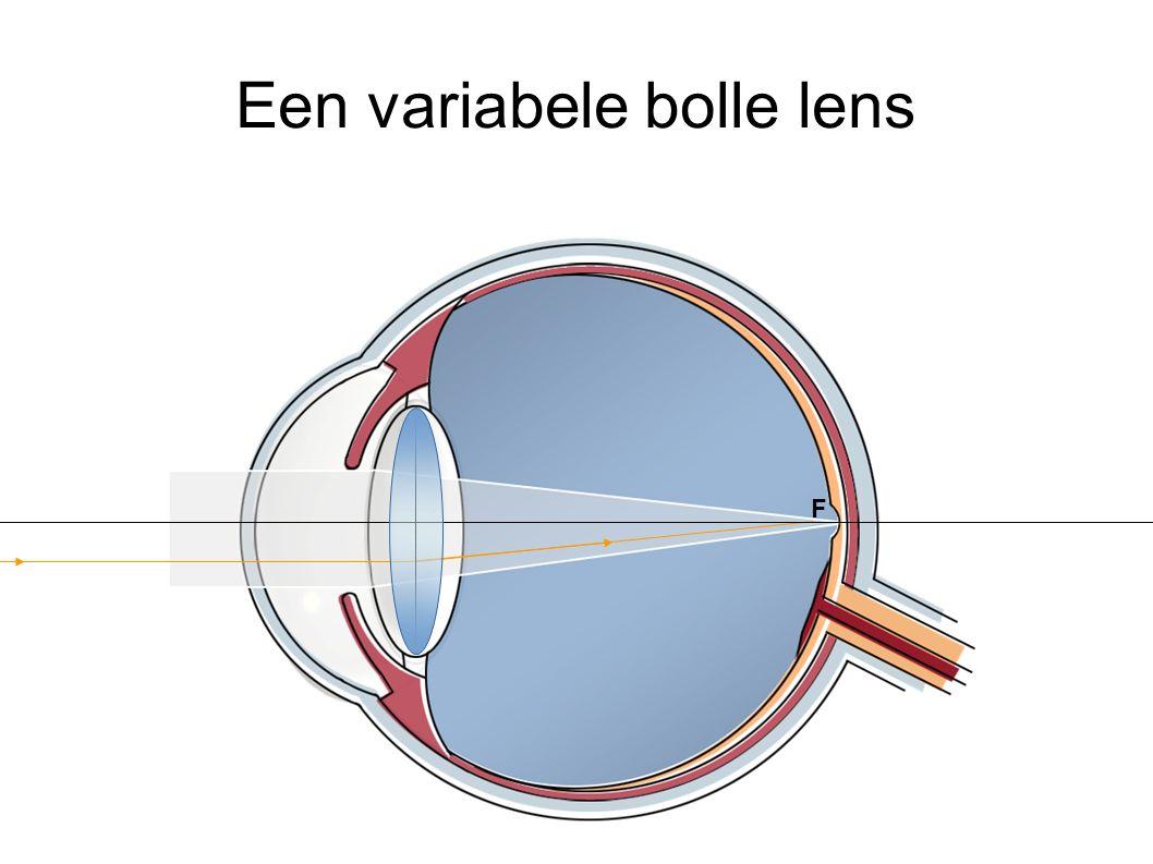 Een variabele bolle lens