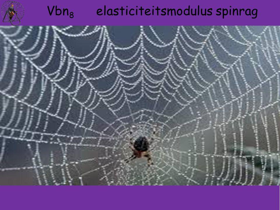 Vbn8 elasticiteitsmodulus spinrag