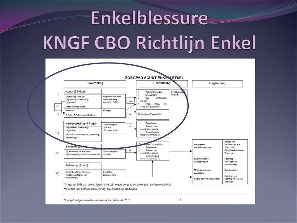 Enkelblessure KNGF CBO Richtlijn Enkel