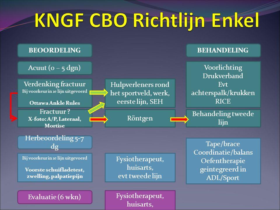 KNGF CBO Richtlijn Enkel