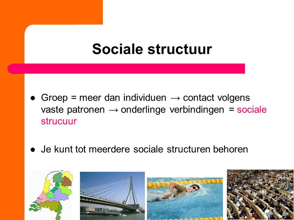 Sociale structuur Groep = meer dan individuen → contact volgens vaste patronen → onderlinge verbindingen = sociale strucuur.