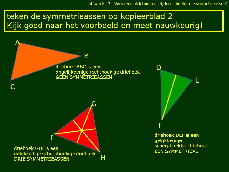 teken de symmetrieassen op kopieerblad 2