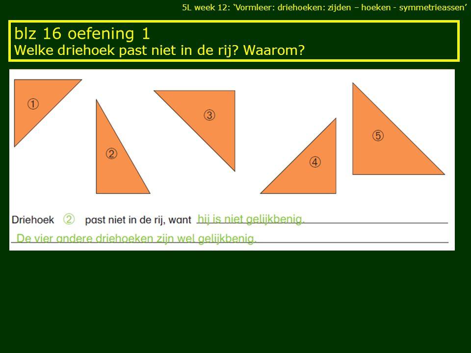 blz 16 oefening 1 Welke driehoek past niet in de rij Waarom