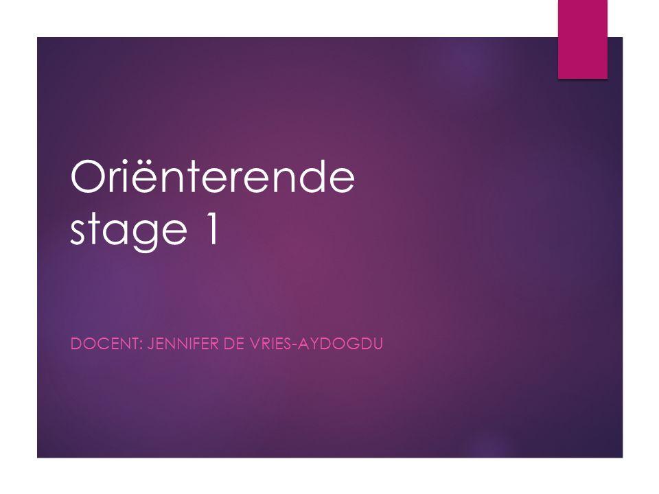 Docent: Jennifer de Vries-Aydogdu