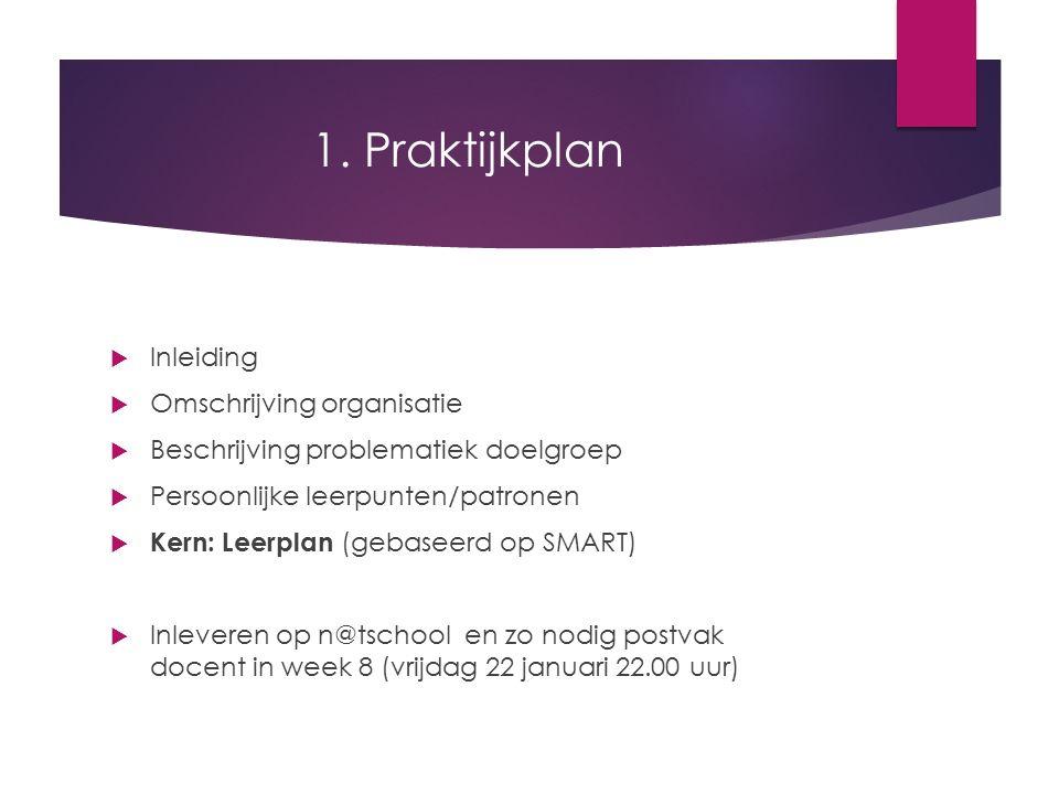 1. Praktijkplan Inleiding Omschrijving organisatie