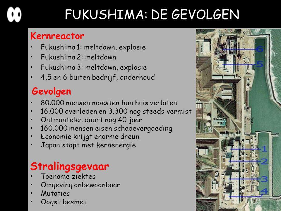 FUKUSHIMA: DE GEVOLGEN