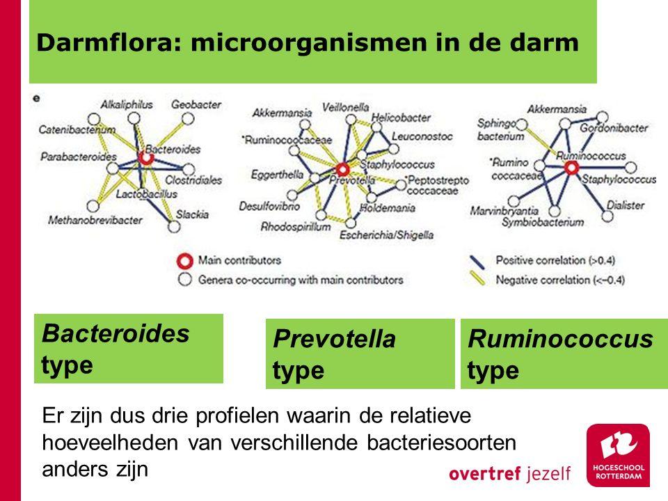 Darmflora: microorganismen in de darm