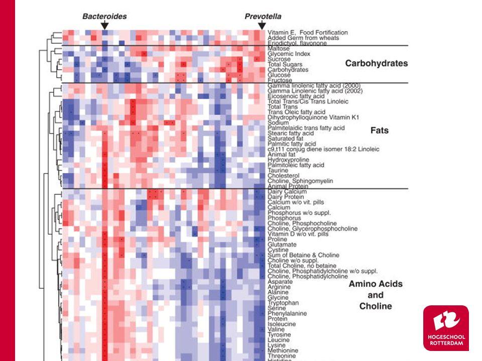 Ieder blokje staat voor de correlatie tussen de hoeveelheid voedingsmiddel in het dieet, en de relatieve hoeveelheid van één bacterie genus (gemeten in de volledig onderzochte populatie)