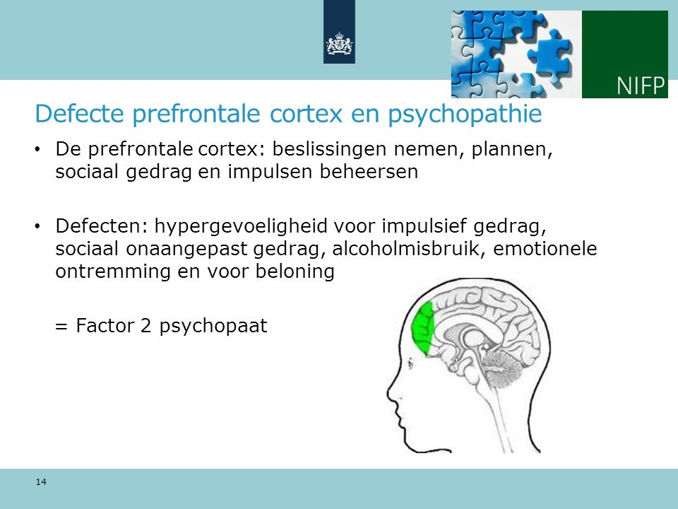 Defecte prefrontale cortex en psychopathie