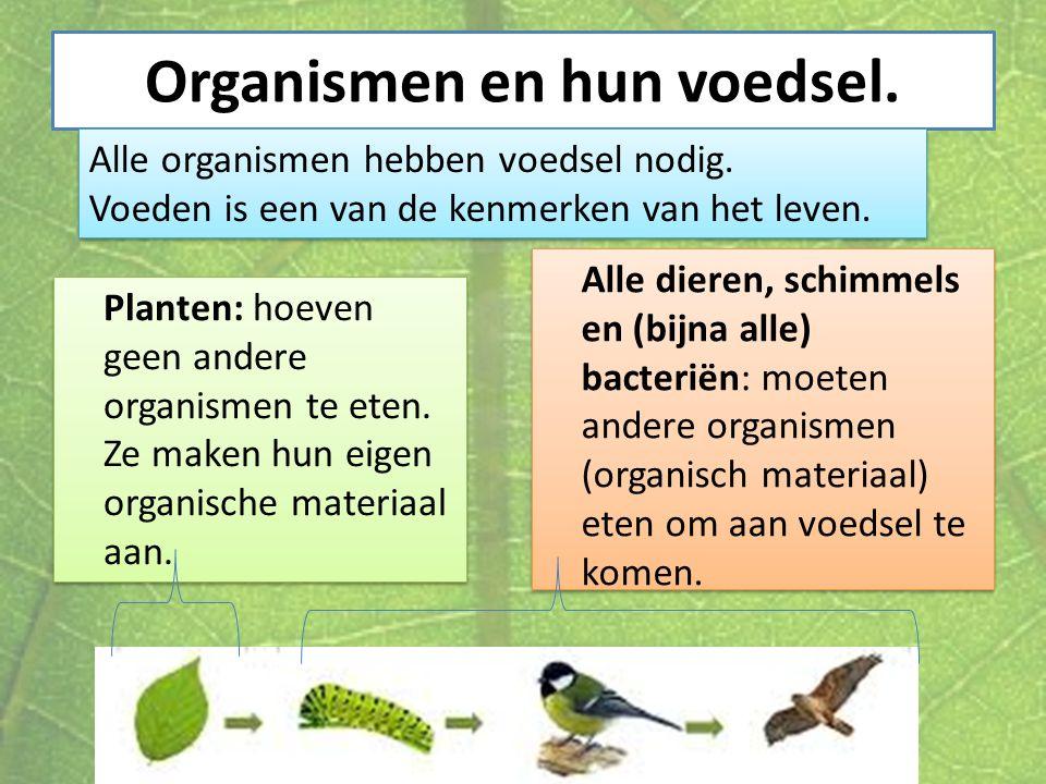 Organismen en hun voedsel.