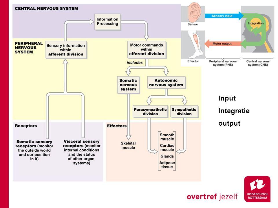 Input Integratie output