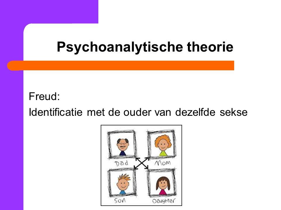 Psychoanalytische theorie
