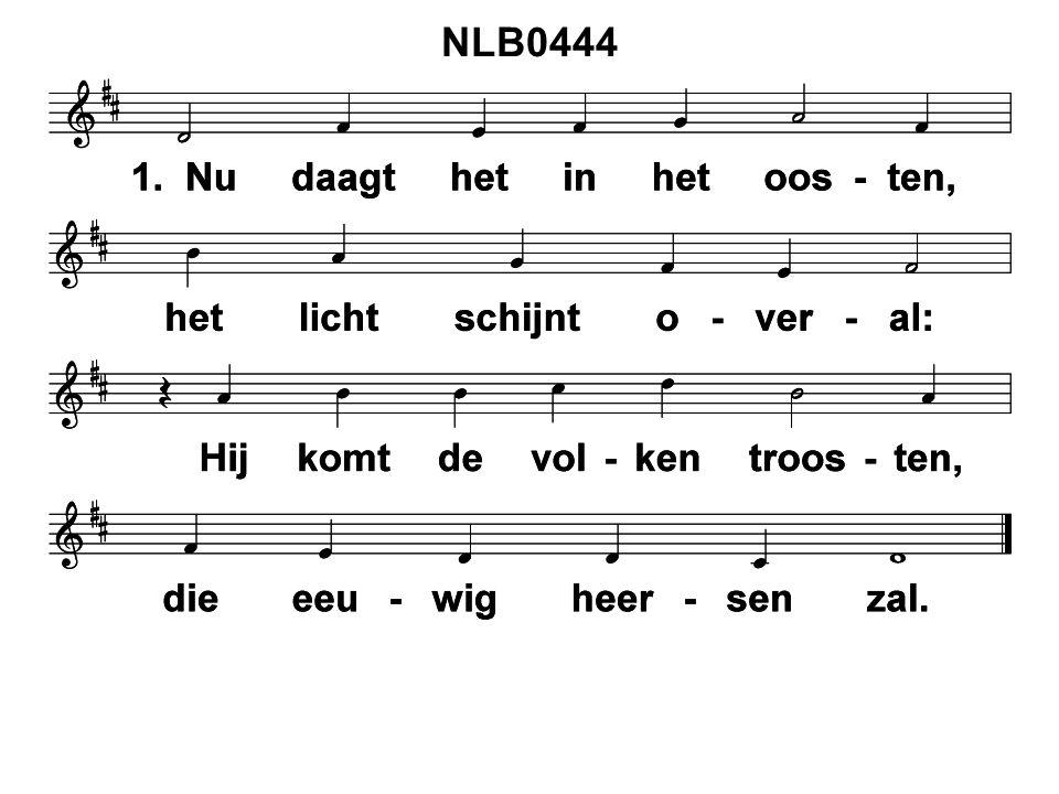 NLB0444