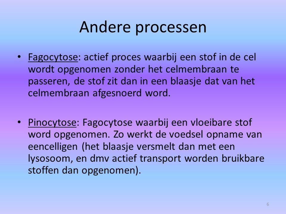 Andere processen
