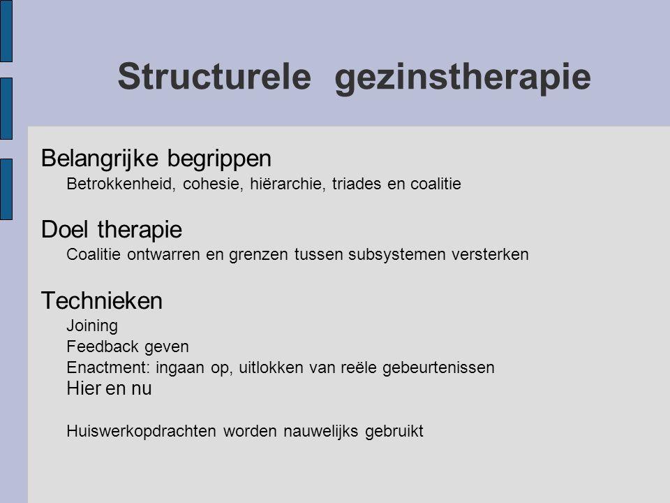 Structurele gezinstherapie