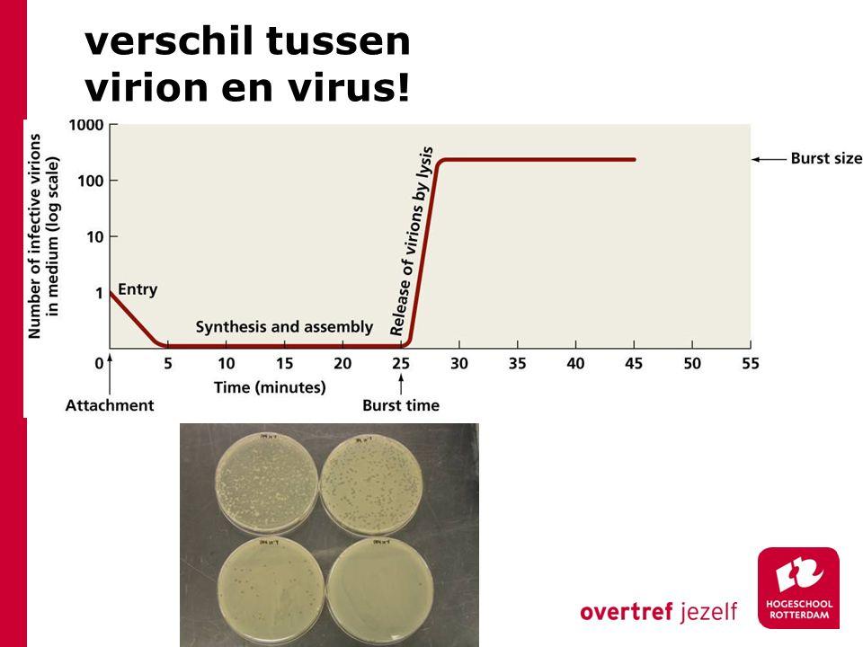 verschil tussen virion en virus!