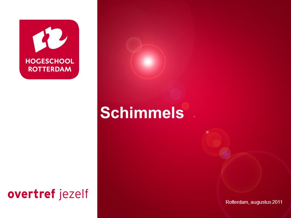 Presentatie titel Schimmels Rotterdam, 00 januari 2007