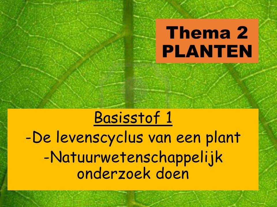 Thema 2 PLANTEN Basisstof 1 -De levenscyclus van een plant
